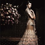 Best Indian Designers Wedding Wear Lehenga Choli (2)