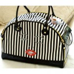 New Betsey Johnson Bags 2015-16 for Girls (5)