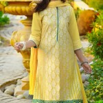 Nimsay Eid Collection 2015 for Girls (6)