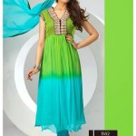 Anarkali Long Suits 2015 Design for Girls (4)