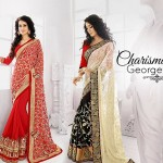 Cbazaar glossy Fashion Indian Dresses Designs by 2015 (8)