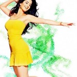 Katrina Kaif 2015 New Bollywood Actress Dress Designs (6)