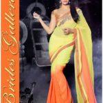 Hot Jacqueline Fernandez Indian Sarees 2016 Fashion Design (3)