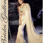 Bollywood Actress Jacqueline Fernandez Amazing Sarees (1)