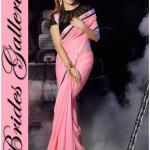 Bollywood Actress Jacqueline Fernandez Amazing Sarees 2015 (1)