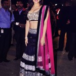 Bollywood Actress Splendid Lehenga Choli 2016 For Wedding (8)