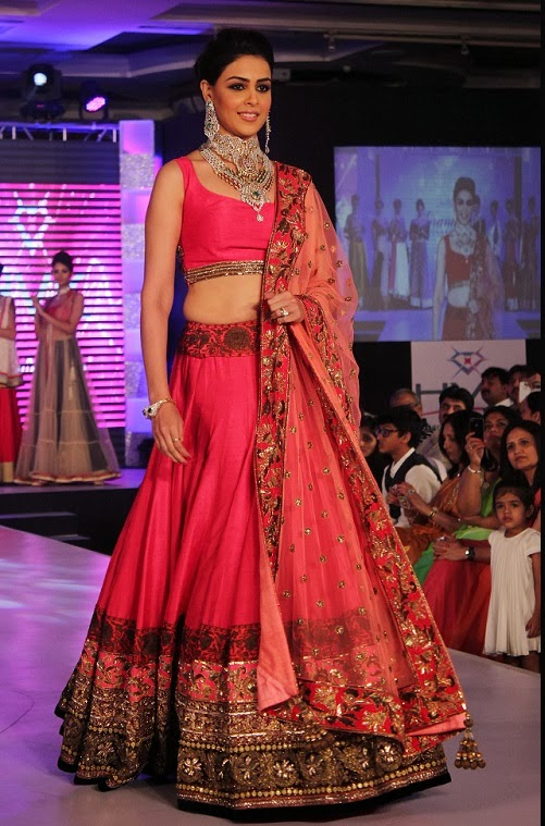 Bollywood Actress Splendid Lehenga Choli 2016 For Wedding (3)