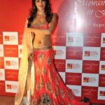 Bollywood Actress Splendid Lehenga Choli 2016 For Wedding (6)