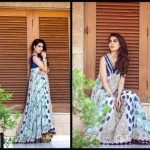 Rozina Munib Chinene Chiffon Dresses 2015-2016 For Women (1)