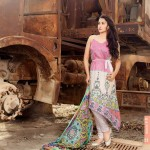 Latest lawn by Shariq Textiles (3)