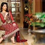 Beautiful party wear Royal Fantasy by Falak Fabrics