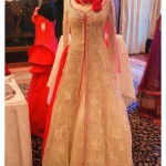 Celebrity fashion Traditional Fancy Party Wear Dresses in Pk