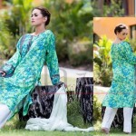 Egyptian Cotton Mid Summer Printed Collection