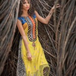 Heritage Collection by Ashraf Valliani 2015 for Ladies (2)