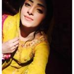 Sanam Chaudhry Wedding Pics
