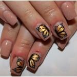 Trendy art of Nail Art Butterfly