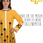 Ego Winter Fall Kurta Dresses women wear