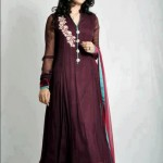 Pakistani Stylish Outfits for Special Times