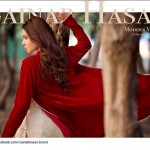 Zainab Hassan latest Vintage Dresses 2016 for Winter (8)