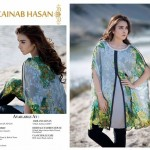 Zainab Hassan Stylish Vintage Dresses 2016 for Winter (6)
