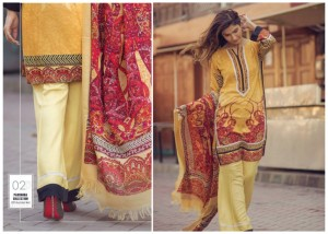 Firdous Fashion Pashmina Shawl Special Suit Image with price