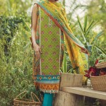 Alkaram studio The Scarlett Wanderer Spring Collection 2017 (15)