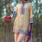 Alkaram studio The Scarlett Wanderer Spring Collection 2017 (21)