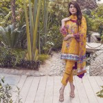 Alkaram studio The Scarlett Wanderer Spring Collection 2017 (6)