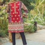 Alkaram studio The Scarlett Wanderer Spring Collection 2017 (9)
