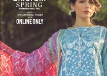 Alkaram studio The Scarlett Wanderer Spring Collection 2017 (3)