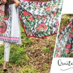 Kapray Spring Summer floral Lawn Collection 2017 (3)
