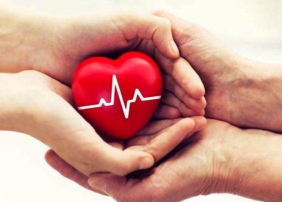 Best 10 Heart-Healthy Foods to Work into Your Diet