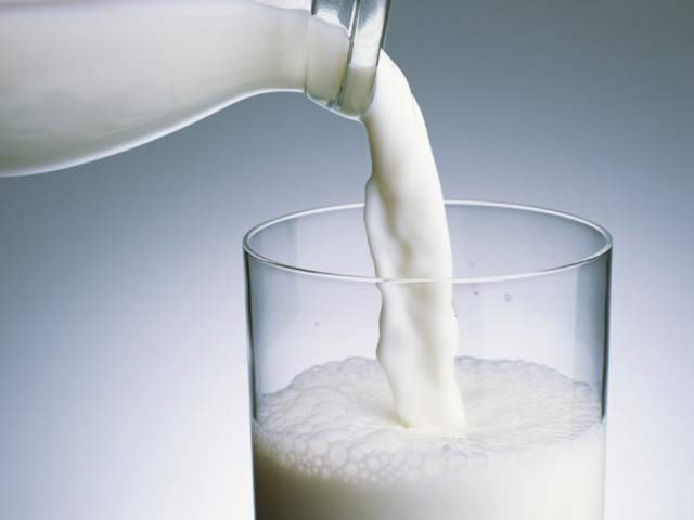 Cow Milk regularly Protects Fatty Children from Diabetes